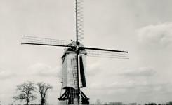 Windekemolen Balegem anno 1900